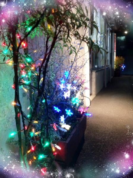 フラットフィールドクリスマス3
